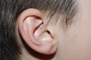 childs-ear-1032418-m